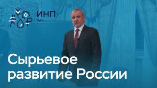 """Видео: """"Энергетический сектор в формировании долгосрочной экономической динамики в России"""""""