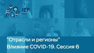 """Видео: """"Влияние COVID-19 на отрасли экономики, сессия 6"""""""